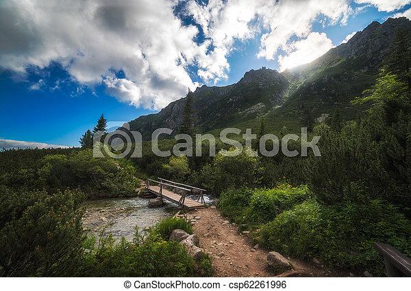 Wooden Bridge over Creek under Mountain Peaks - csp62261996