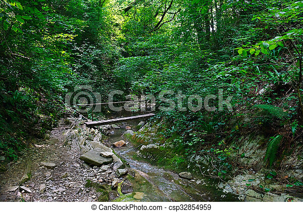 Wooden bridge over mountain creek in the forest - csp32854959
