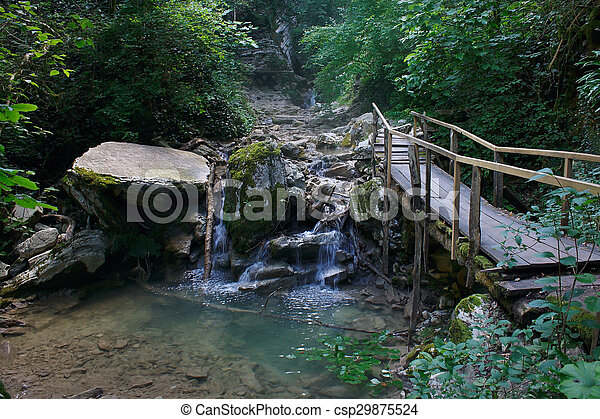 Wooden bridge over mountain stream in the forest - csp29875524