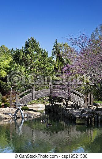 Wooden Bridge over pond in a Japanese Garden - csp19521536