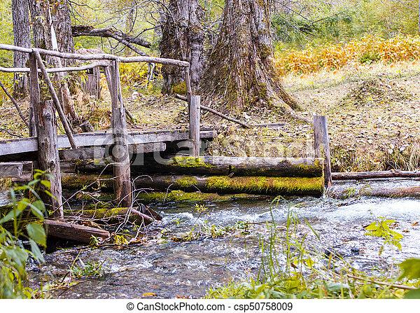 wooden bridge over stream in the forest. - csp50758009