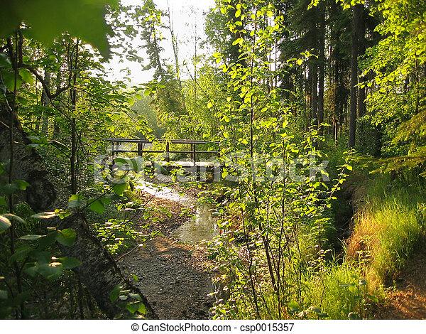 Wooden bridge - csp0015357