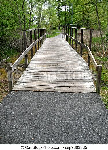 Wooden bridge - csp9303335