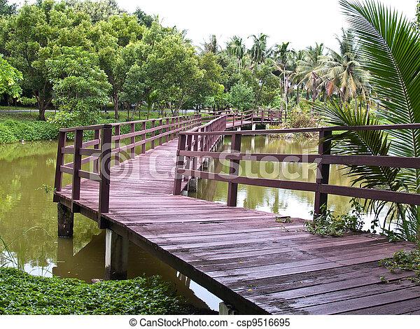 Wooden bridge - csp9516695