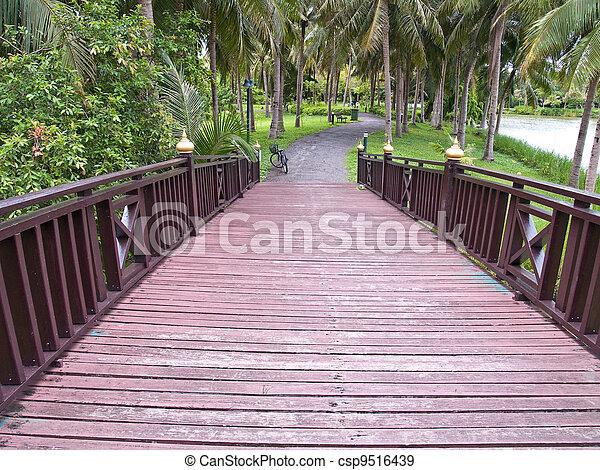 Wooden bridge - csp9516439