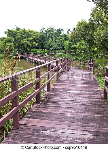 Wooden bridge - csp9516449
