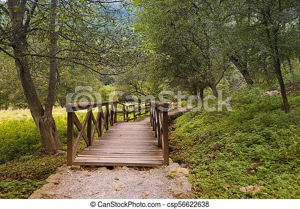 Wooden Bridge - csp56622638