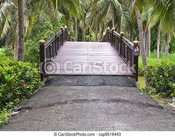 Wooden bridge - csp9516443