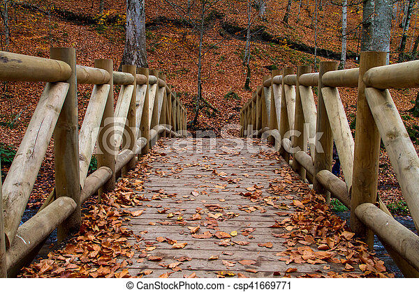 Wooden Bridge with Fallen Leaves - csp41669771