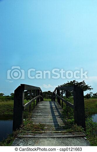wooden bridzs - csp0121663