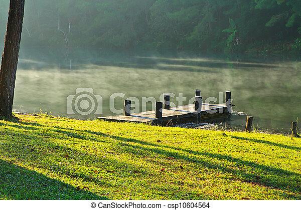 wooden bridzs, water. - csp10604564