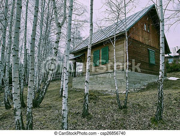 Wooden cottage in a birch forest - csp26856740