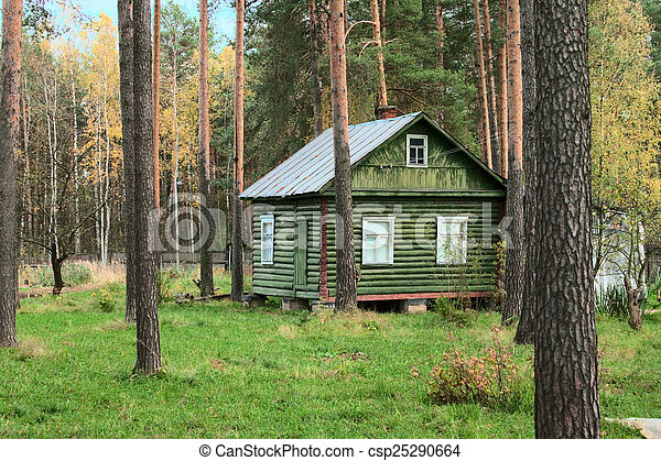 wooden cottage in forest  - csp25290664