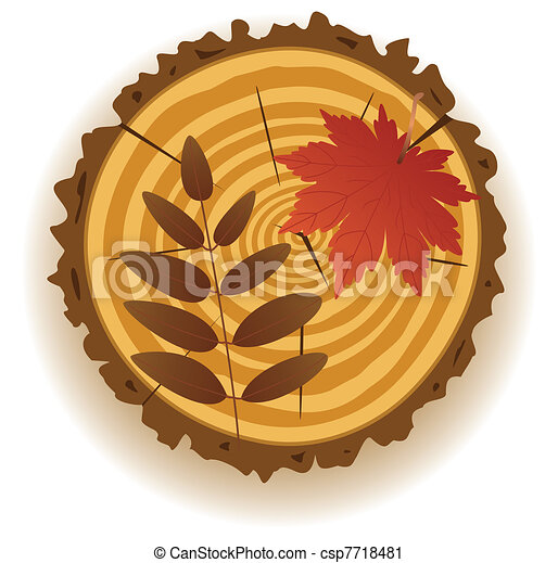 wooden cut and autumn leaves - csp7718481