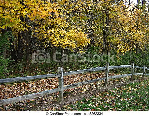Wooden Fence In Autumn - csp5262334