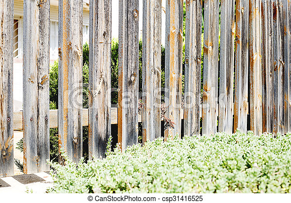 wooden fence - csp31416525