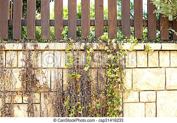 wooden fence - csp31416233