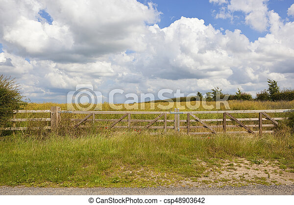 wooden gate and oilseed rape crop - csp48903642