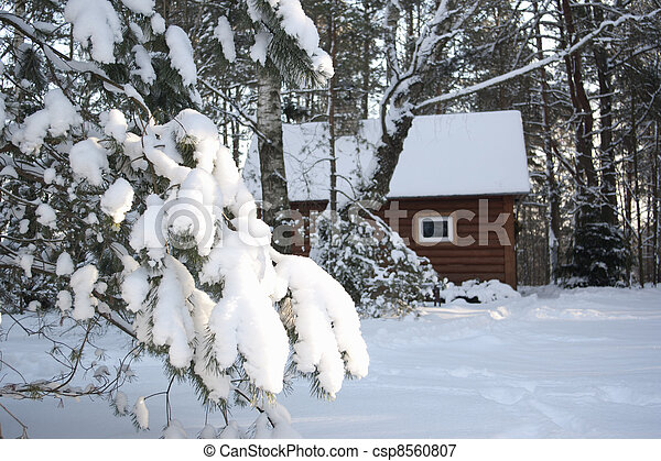 wooden house in winter forest - csp8560807