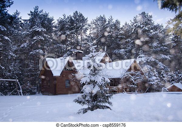 wooden house in winter - csp8559176