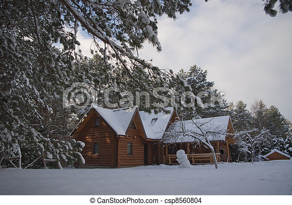 wooden house in winter - csp8560804