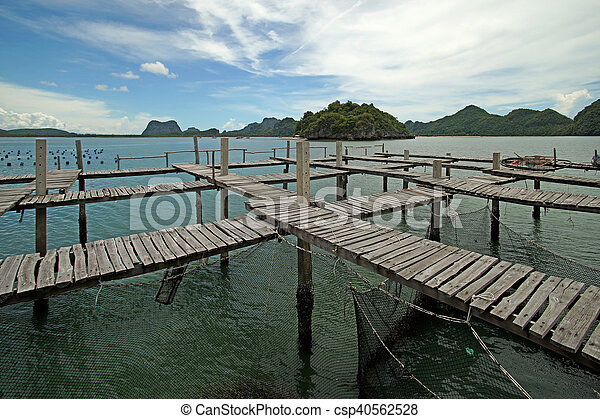 wooden jetty in the sea - csp40562528