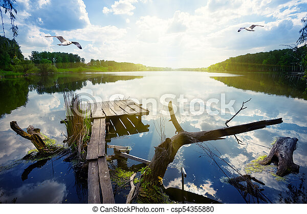 Wooden pier for fishing on the lake with seagulls - csp54355880