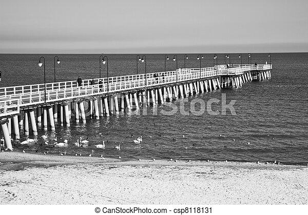 wooden pier - csp8118131