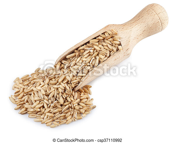 wooden scoop with oat grains isolated on white background - csp37110992
