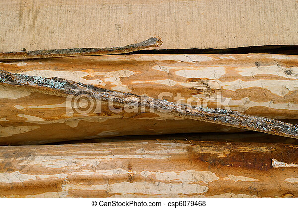 wooden surface - csp6079468