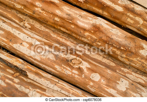 wooden surface - csp6078036