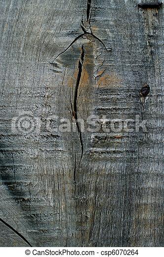 wooden surface - csp6070264