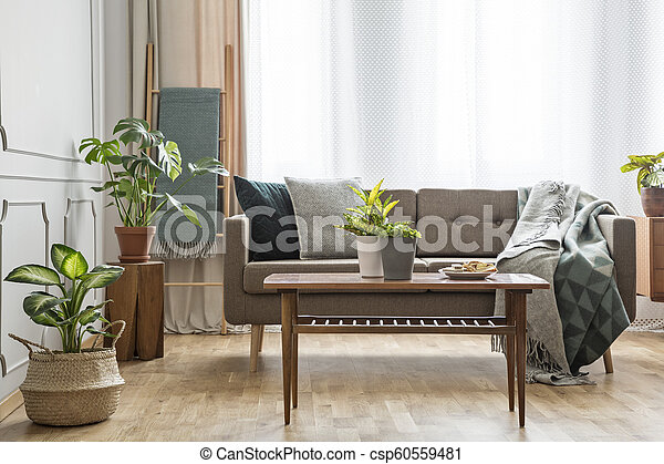 Wooden Table In Front Of Beige Couch In Simple Bright Living Room Interior With Plants Real Photo Canstock
