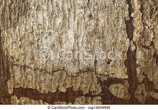 Wooden Texture 2 - csp14044946