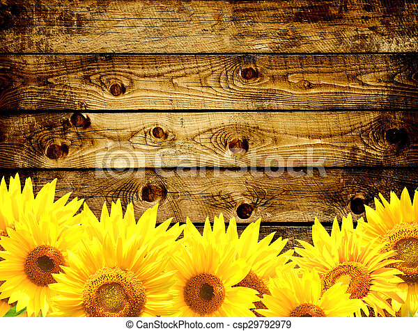 Wooden Texture And Border With Yellow Sunflowers