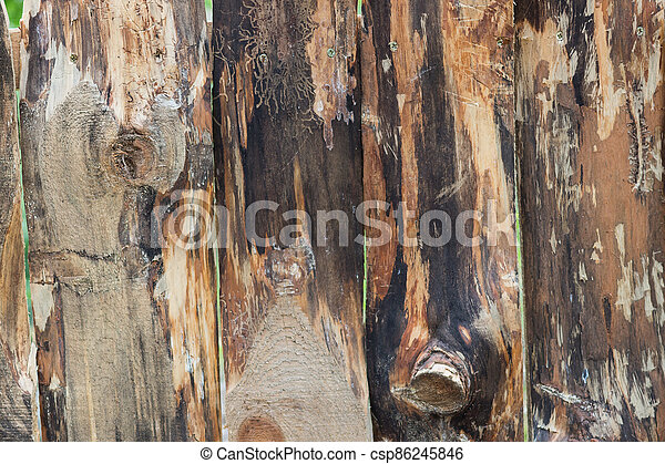 Wooden texture background. - csp86245846