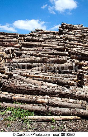wooden trunks - csp10810552