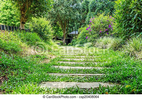Wooden walkway - csp20408064