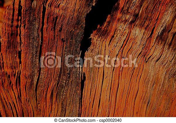 Woodgrain - csp0002040