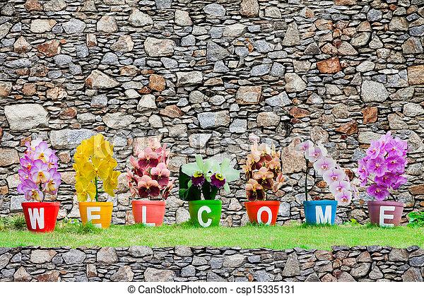 woord, orchidee, steen, achtergrond, vrijstaand, gemaakt, welkom, bloemen, muur, jardiniere - csp15335131