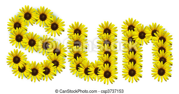 Sunflower Line Drawing : Word sun spelled out with sunflowers drawings search clipart