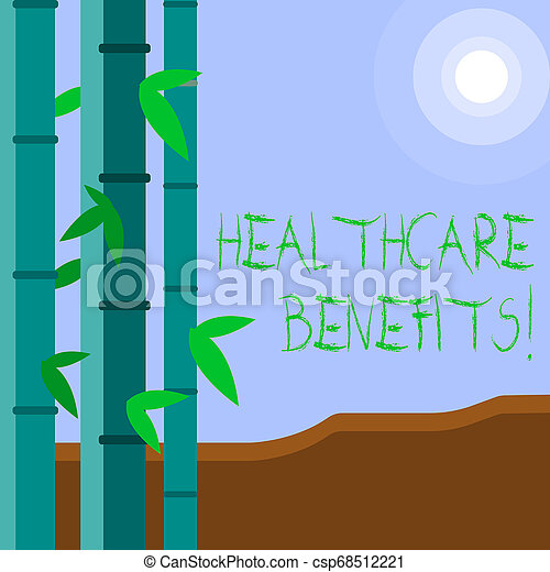 Word writing text Healthcare Benefits. Business concept for monthly fair market valueprovided to Employee dependents Colorful Sets of Leafy Bamboo on Left Side and Moon or Sun with Round Beam. - csp68512221