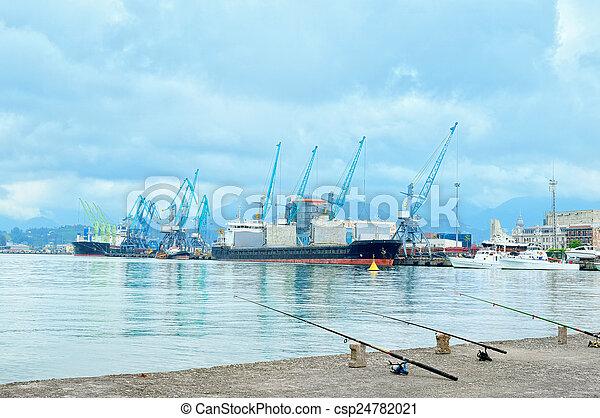 Working cranes in sea port - csp24782021