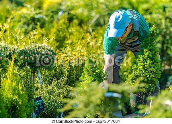 Working in a Garden Store - csp73017684