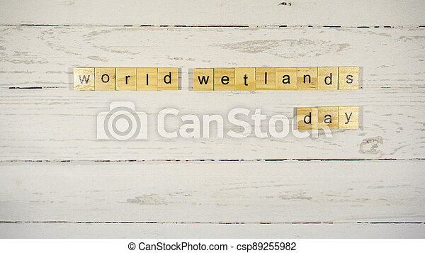 World Wetlands Day.words from wooden cubes with letters - csp89255982