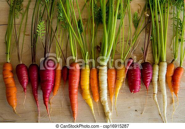 wortels, organisch - csp16915287
