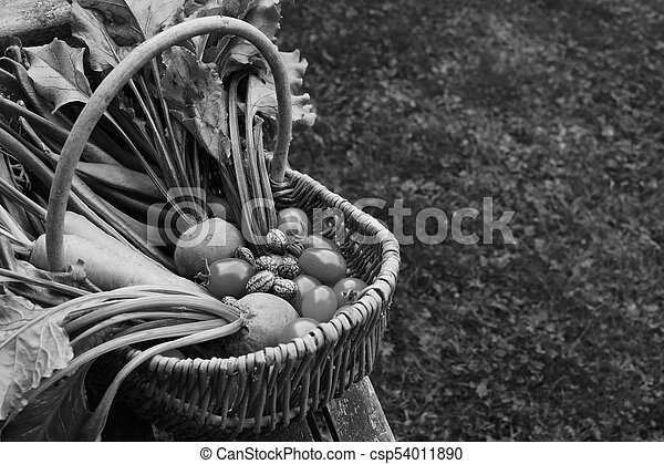 Awe Inspiring Woven Basket Filled With Freshly Harvested Vegetables From An Allotment Gmtry Best Dining Table And Chair Ideas Images Gmtryco
