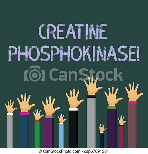 Writing note showing Creatine Phosphokinase. Business photo showcasing protein that aids chemical changes in the body Businessmen Hands Raising Up Above the Head, Palm In Front. - csp67891381