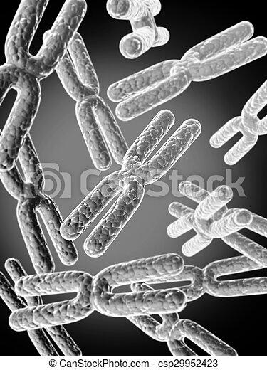 x, résumé, chromosome, fond - csp29952423