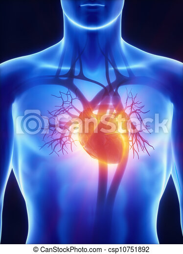 X-ray cardiovascular system - csp10751892